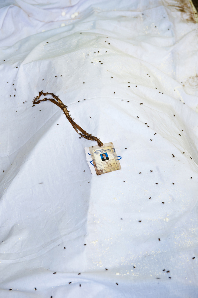 © Ashraful Huda  Flies over a rotten dead body which is recovered on the fourth day from the rubble of Rana Plaza at Savar.